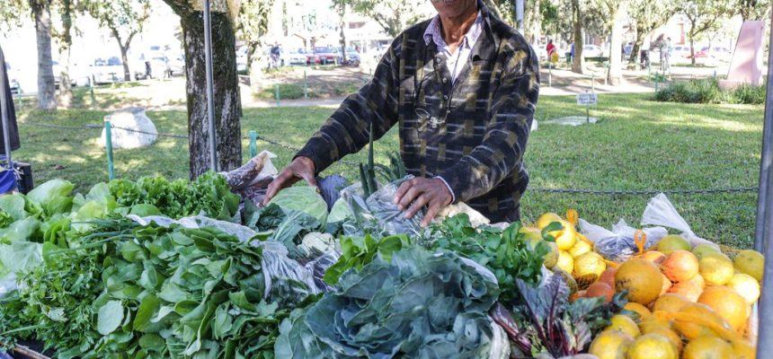 Município de Viamão tem nova feira de alimentos orgânicos, no RS