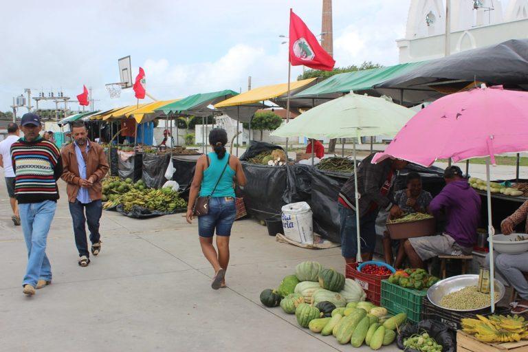 MST inicia 2ª Feira da Reforma Agrária em São Luís do Quitunde