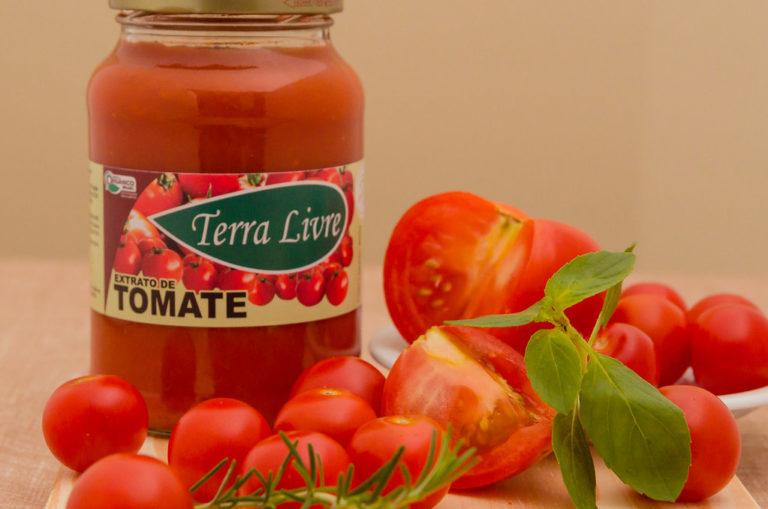 MST inaugura participação na Fenatrigo com venda de alimentos orgânicos