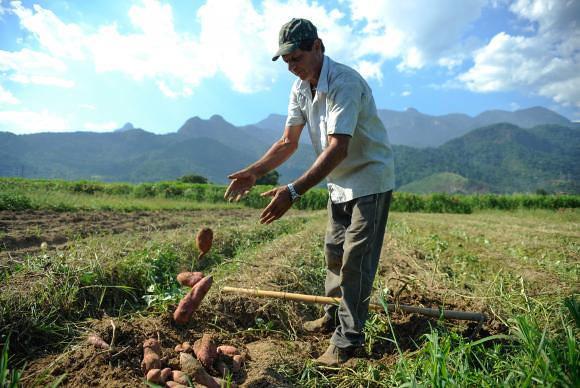 Relatório aponta redução de 95% no orçamento de Temer para a Reforma Agrária
