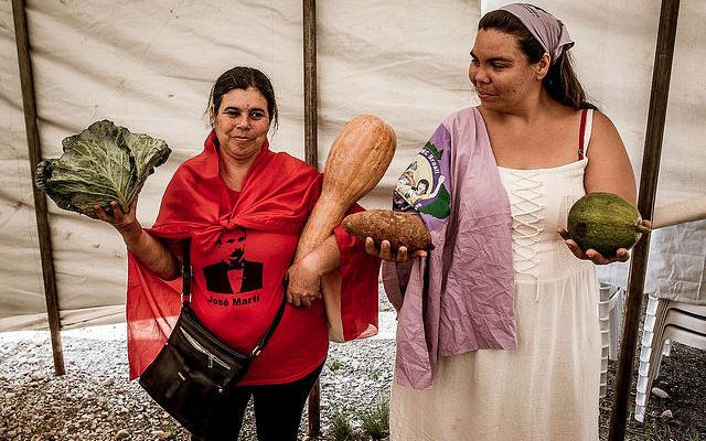 Agroecologia cresce no Paraná, garante renda e alimentos saudáveis