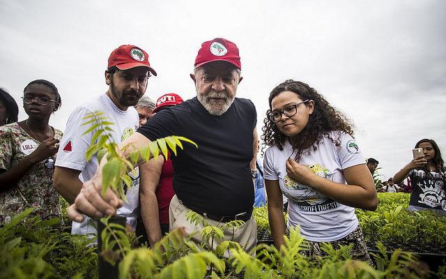 MST produz 150 mil mudas para reflorestar Bacia do Rio Doce contaminada pela Samarco