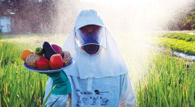 ANVISA proíbe o uso do agrotóxico paraquate; medida só valerá daqui 3 anos