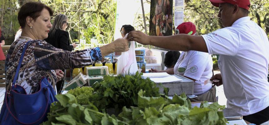 MST participa de feira orgânica na Assembleia Legislativa do RS