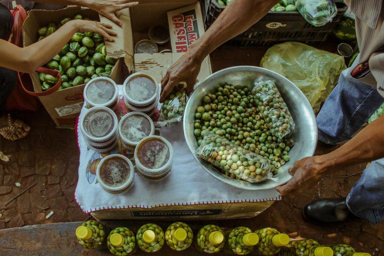 Feira da Reforma Agrária ocupa o centro do Campo Grande com alimentos saudáveis