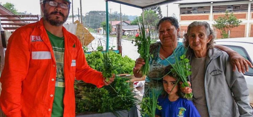 Sem veneno: acampamento do MST entrega alimentos à população de Passo Fundo, no RS