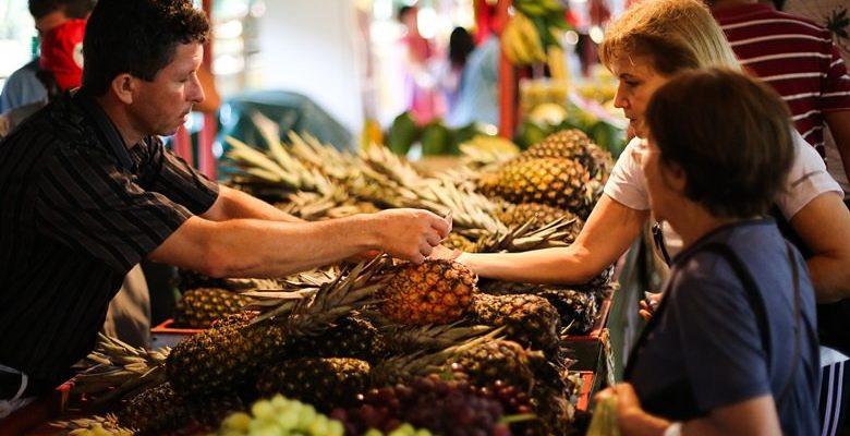 1ª Feira Agroecológica de São Leopoldo acontece no próximo sábado (28)