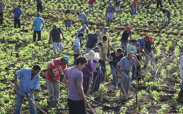 Prisões autorizadas por Moro desarticularam agricultura familiar no PR; caso terminou em absolvições