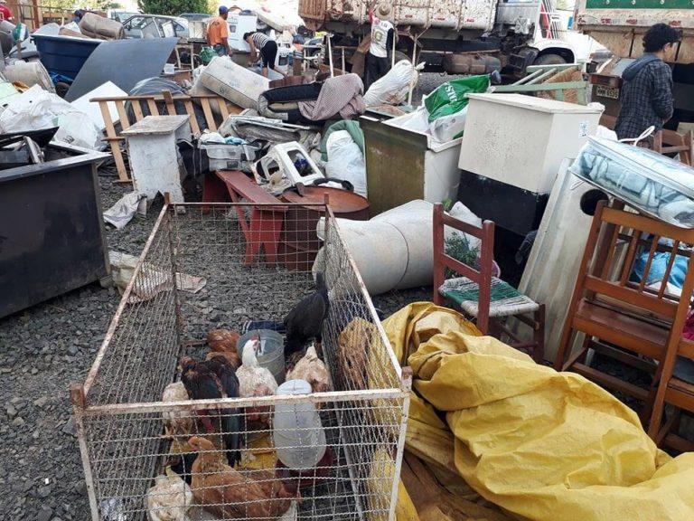 Famílias despejadas ficam sem ter pra onde ir e fazendeiro destrói produção dos camponeses