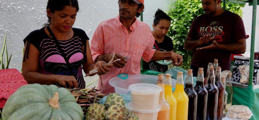 Fortaleza recebe feira da Reforma Agrária no próximo sábado