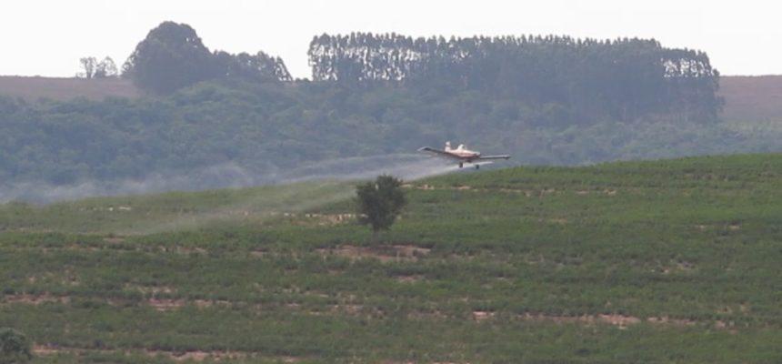 O veneno que vem pelo céu: estação ecológica e assentamento no interior de SP são contaminados pela pulverização aérea
