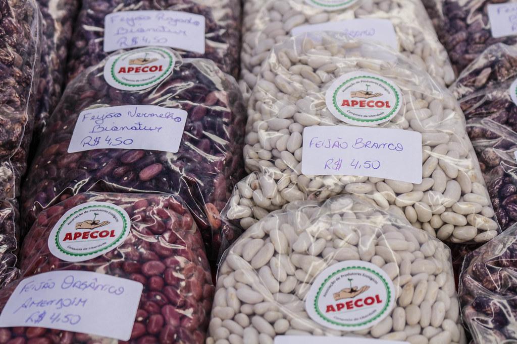 Associação do MST produz feijão orgânico em dois assentamenos de Piratini.jpg