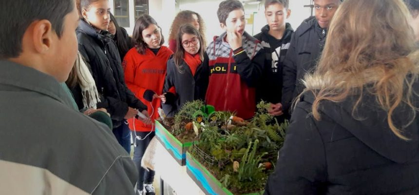 Proteção as águas: estudantes do MST têm trabalho selecionado em Mostra Pedagógica