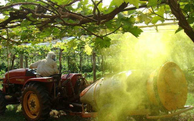 O 'agro' é sujo: veneno, mortes e destruição da natureza definem agronegócio
