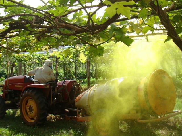 mortes e destruição da natureza definem agronegócio