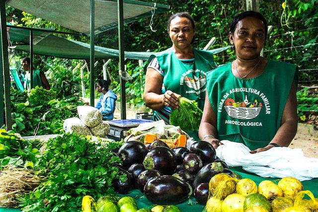 Feiras agroecológicas levam alimentos sem veneno para lares paraibanos