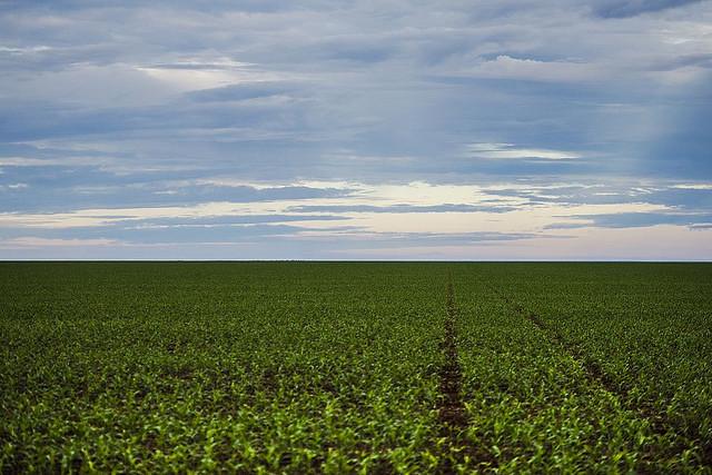 2 mil latifúndios ocupam área maior que 4 milhões de propriedades rurais