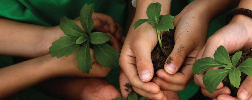 No Dia Mundial do Meio Ambiente, a ANA divulga a carta do IV ENA
