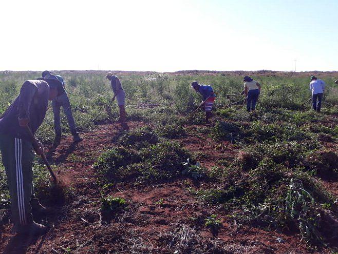 CPT repudia a tentativa de despejo de 96 famílias do assentamento Nova Conquista no MT