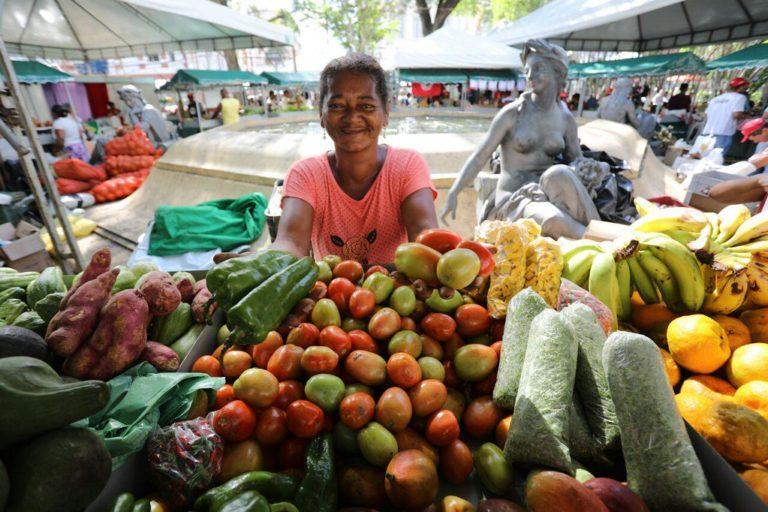 MST investe na produção agroecológica de Norte a Sul da Bahia