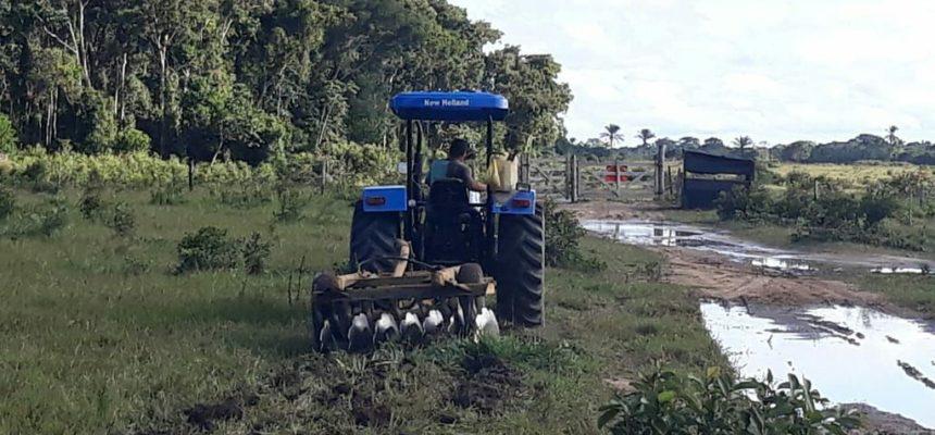 Sem Terra reocupam a Fazenda Campo do Pó, no Extremo Sul da Bahia