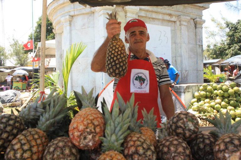 o homem de mil abacaxis