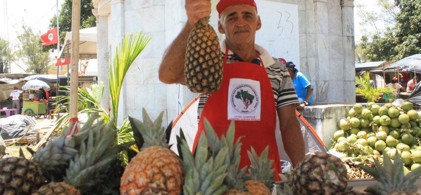 Seu Luiz, o homem de mil abacaxis