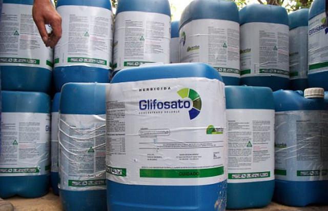 Governo Temer e setor dos agrotóxicos tentam impor liberação do glifosato