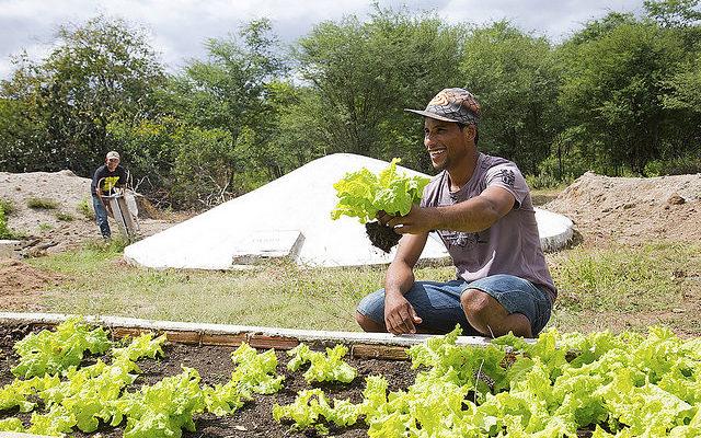 Agroecologia popular e camponesa: a chave para acabar com a fome no mundo