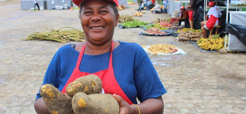 MST realiza 1ª Feira da Reforma Agrária em Teotônio Vilela, no Agreste de Alagoas