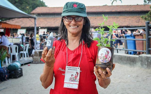 Assentamentos do MST apostam no cultivo de plantas medicinais