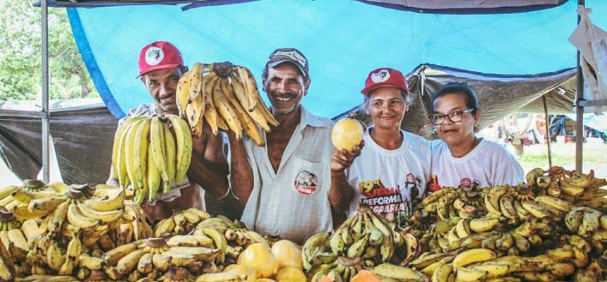 Governo de Haddad irá melhorar a vida do agricultor familiar e camponês brasileiro