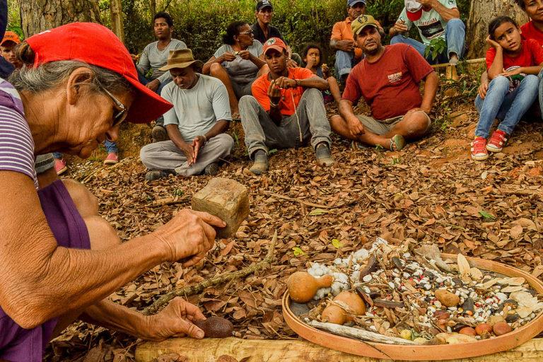Agrofloresta é nossa casa: Campanha denuncia ameaça de despejo e defende Acampamento José Lutzenberg