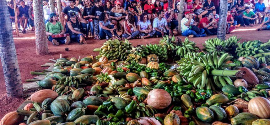 PM suspende despejo no acampamento Zé Maria do Tomé e famílias seguem na resistência