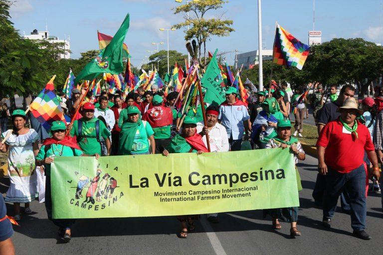 ONU aprova a declaração sobre direitos dos camponeses e camponesas