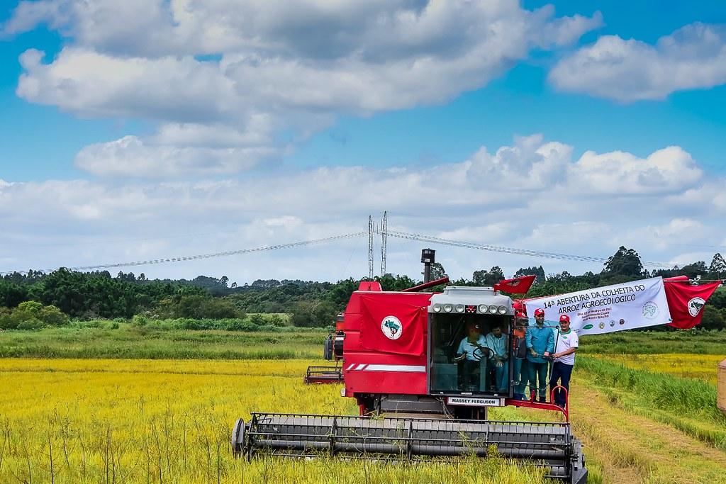 O assentamento produz arroz orgânico. Na foto, ato de abertura da colheita em 2017. Foto Tiago Giannichini.jpeg