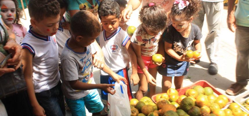 Com programação especial, Feira do MST celebra alimentação saudável com as crianças do campo e da cidade