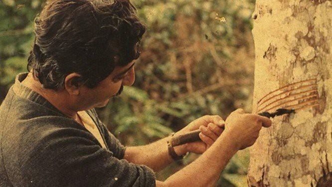 Chico Mendes inspira luta pela biodiversidade e direito à vida