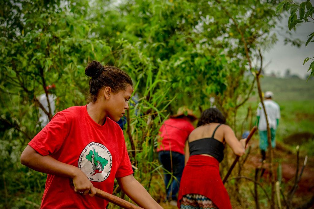 Agroecologia é o Caminho para produção de alimentos saudáveis em São Paulo
