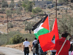 O MST e a causa palestina