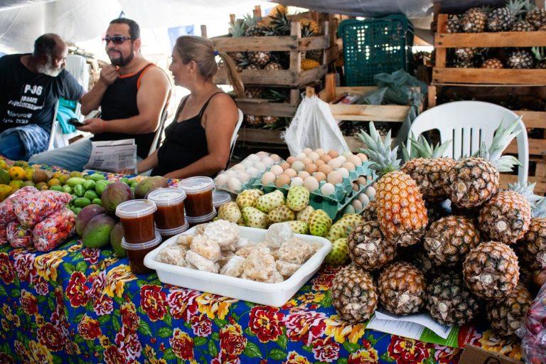 Começa no Rio de Janeiro 10ª Feira da Reforma Agrária Cícero Guedes