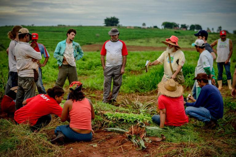 Feira da Reforma Agrária leva produção de assentamentos para o centro de Bauru