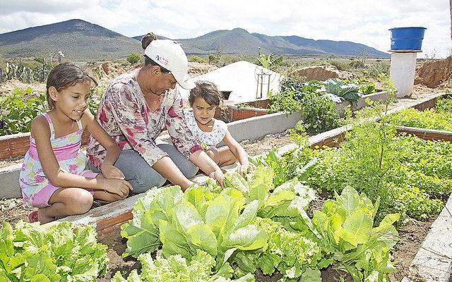 O semiárido nos desafios para o desenvolvimento agrário em Pernambuco