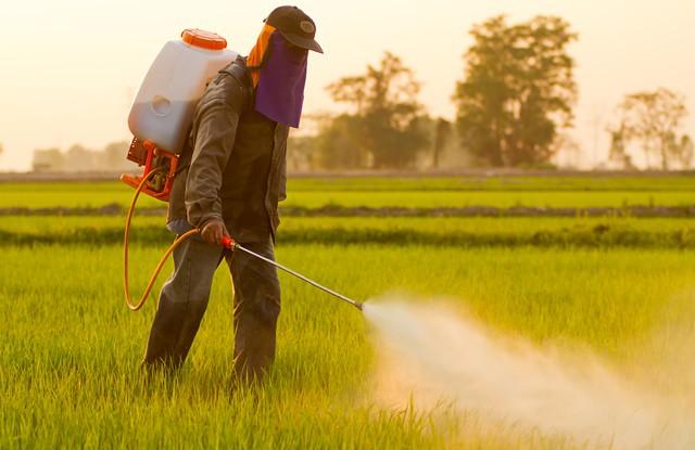Ministério da Agricultura libera mais 19 agrotóxicos