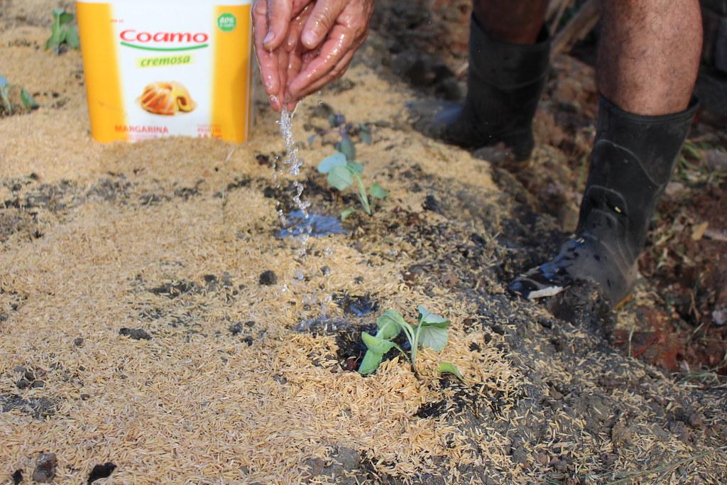 MST constroi horta agroecológica na Associação de Moradores no Bairro Matias Velho Canos_ Fotos -  Maiara Rauber.JPG
