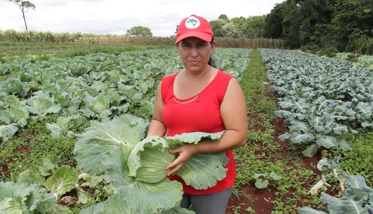 Assentamento Dorcelina Folador: de terra sem pássaros a modelo de Reforma Agrária