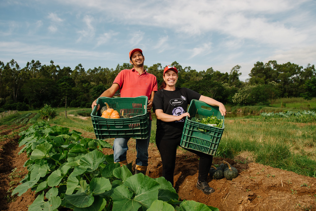 Além de arroz, o Assentamento Santa Rita de Cássia II produz hortaliças para feiras ecológicas e  o PNAE. Foto Alex Garcia.jpg