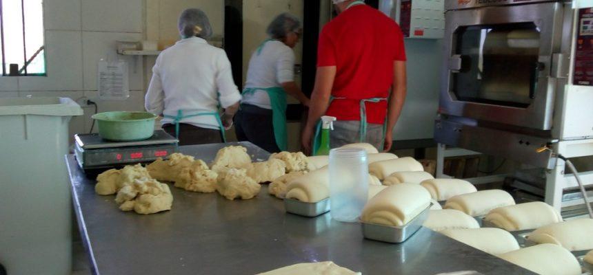 Cooperativa do MST entrega mais de 90 toneladas de alimentos às escolas
