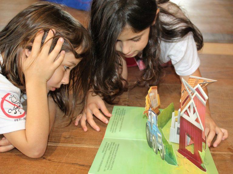 Escola do campo proporciona uma educação libertadora