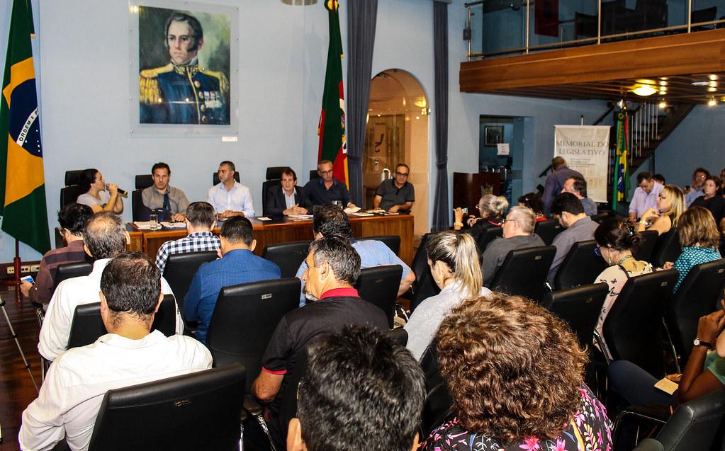 Representante do MST no seminário contra o Pacote dos venenos, Daniele Casarotto  - Foto Maiara Rauber.jpg